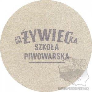 zywbz-251a
